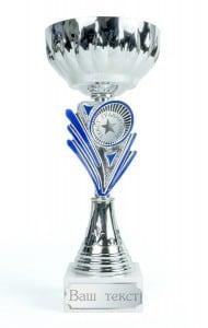 Кубок с индивидуальной гравировкой \Серебро\Подарочный кубок с гравировкой на заказ<br>
