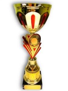 Кубок с индивидуальной гравировкой \Золото с красным\Подарочный кубок с гравировкой на заказ<br>
