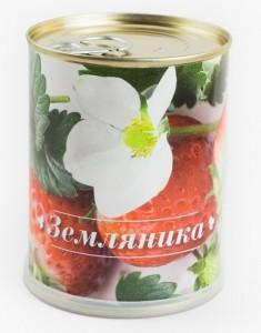 Цветок в банке *Земляника* rostok visa набор для выращивания виола