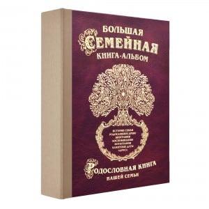 Фото - Большая семейная книга-альбом (Стандарт) литвиненко н большая книга первых открытий