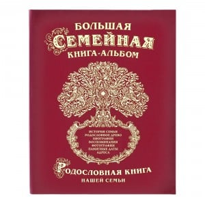 Фото - Большая семейная книга-альбом (классическая) литвиненко н большая книга первых открытий