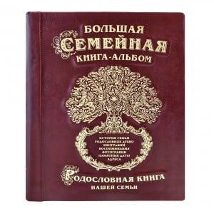 Фото - Большая семейная книга-альбом (бордовая кожа) литвиненко н большая книга первых открытий