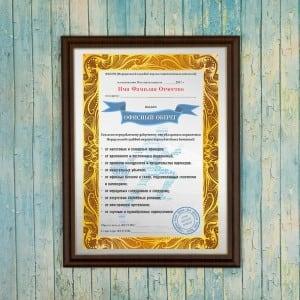 Подарочный диплом (плакетка) *Офисный оберег* диплом подарочный 2472