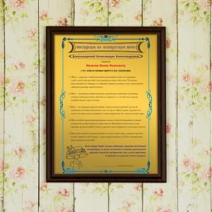 Подарочный диплом (плакетка) *Инструкция по эксплуатации жены* инструкция по эксплуатации фольксваген пассат b5