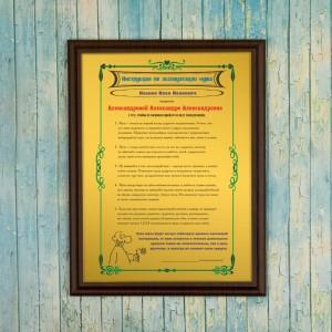 Подарочный диплом (плакетка) *Инструкция по эксплуатации мужа*