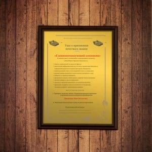 Подарочный диплом *Главнокомандующий компании* инструмент nws q grip 1661 69 250