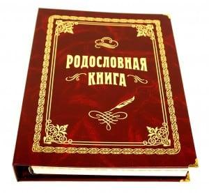 Родословная книга (стандарт) санкт петербургская дворянская родословная книга роды чье внесение