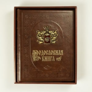Родословная книга Династия дневники фолиант книга родословная книга